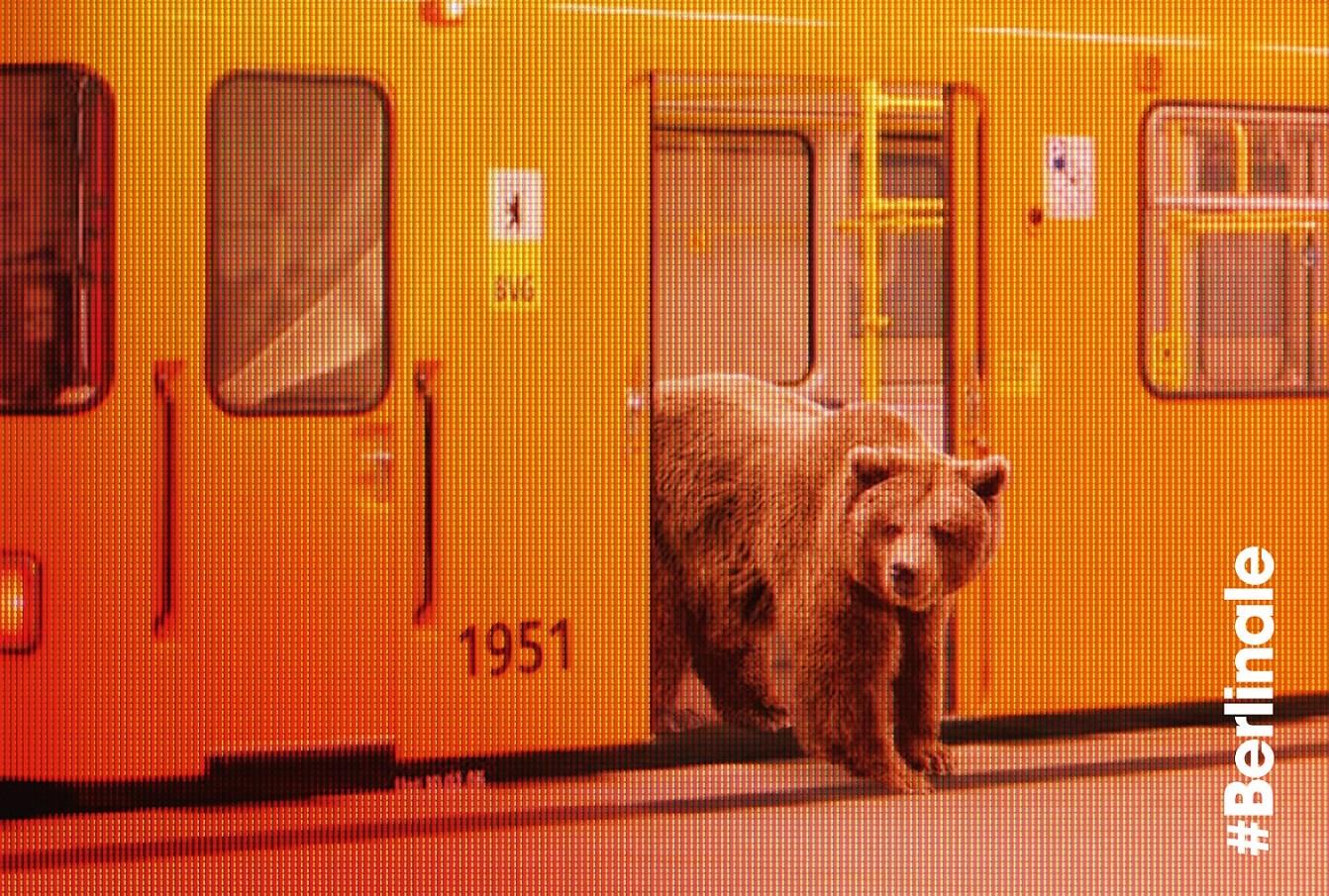 Ogłoszono zwycięzców Berlinale. Tomasz Wasliewski ze Srebrnym Niedźwiedziem!