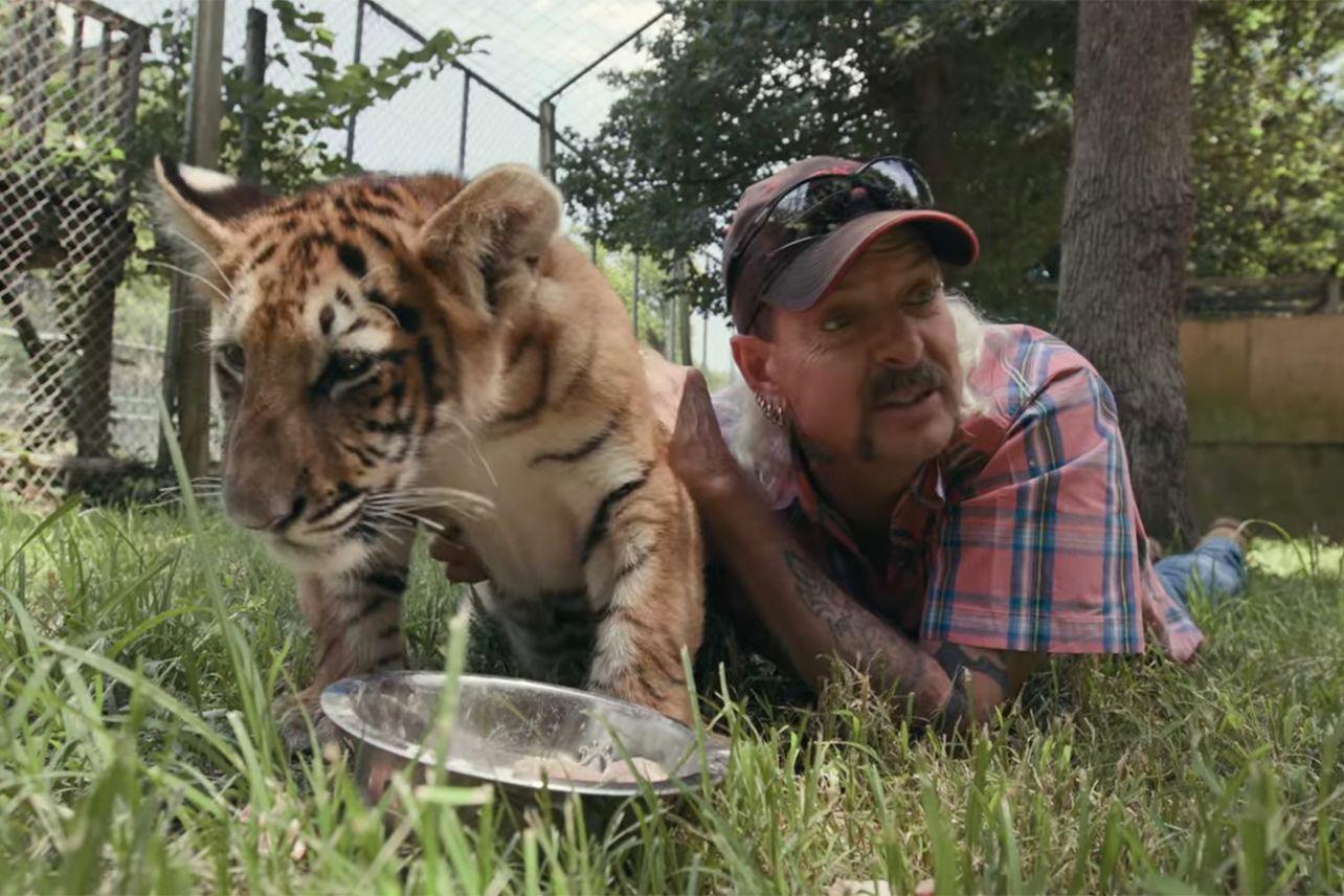 Król tygrysów - ujawniono wynik oglądalności miniserialu Netflixa. Pobił 2. sezon Stranger Things