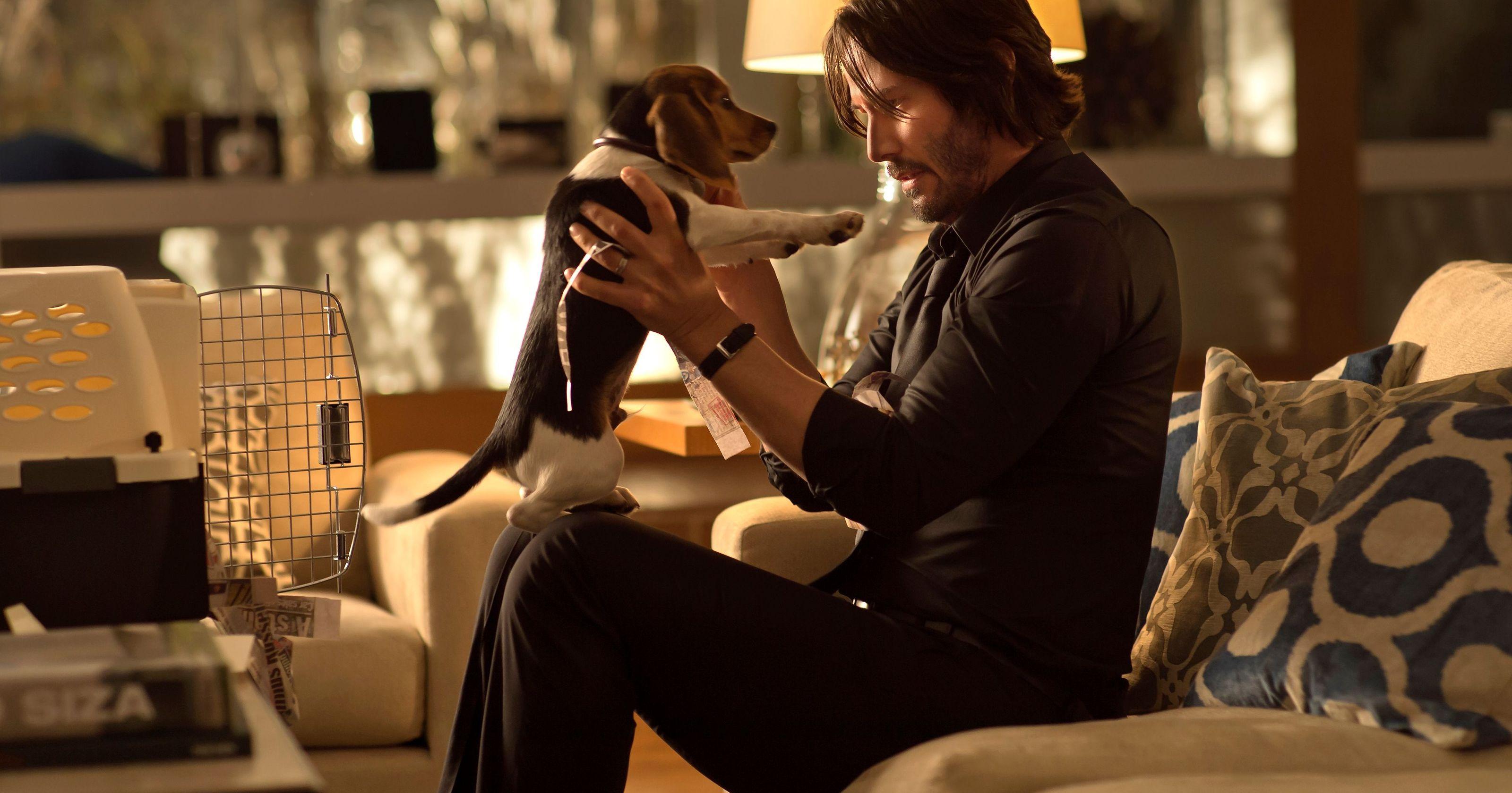 John Wick - reżyser musiał przekonać studio do... uśmiercenia psa. Scenarzysta o losie serii