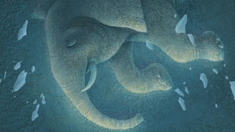 The Magician's Elephant - Netflix ogłasza gwiazdorską obsadę głosową nowej animacji