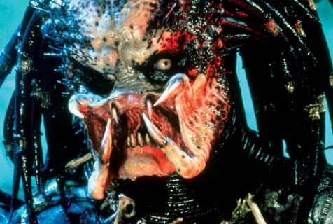 """Co z filmem """"Predator 3""""?"""