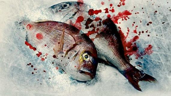 """""""Więcej krwi"""" – zapowiedź nowego kryminału Jo Nesbø"""