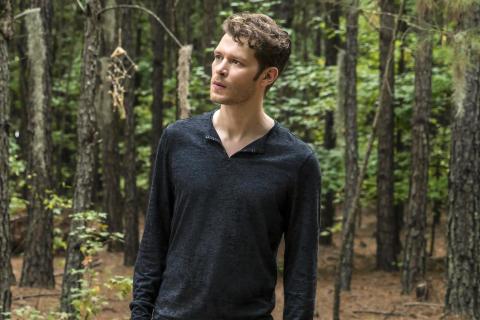 Joseph Morgan z The Originals znalazł nowy serial