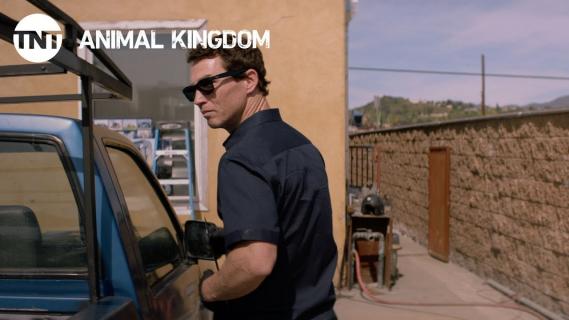 Królestwo zwierząt: sezon 2, odcinek 7 i 8 – recenzja