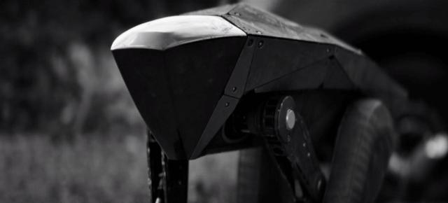 W czarnym lustrze: roboty zabójcy