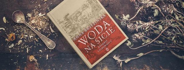 [KONKURS] Woda na sicie. Apokryf czarownicy – wygraj genialną powieść fantasy!