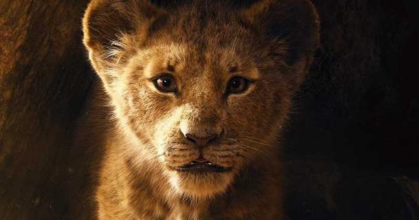 Król lew - znakomite wyniki przedsprzedaży biletów. Jest lista piosenek z filmu