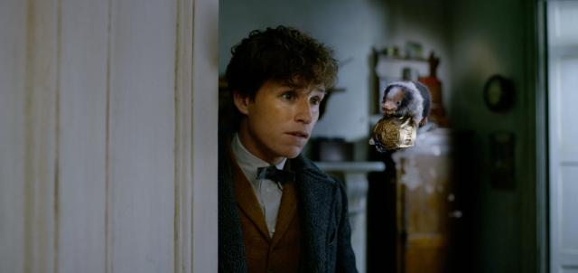 Box Office: Fantastyczne zwierzęta: Zbrodnie Grindelwalda zdobywają kina