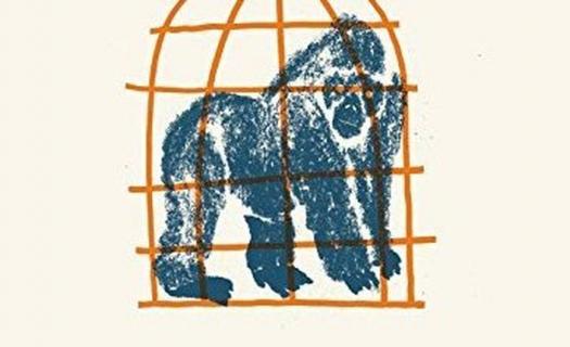 Gorilla and the Bird – serial o chłopcu z bipolarną osobowością trafi na HBO