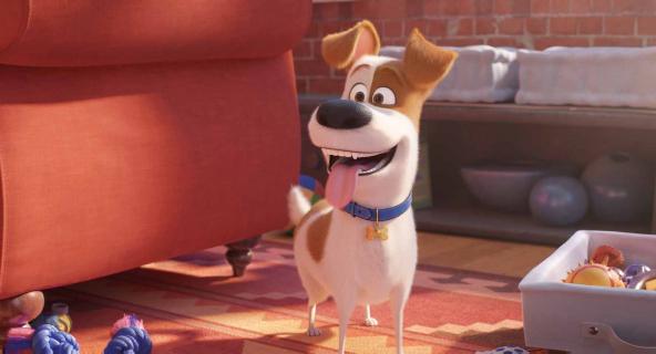 Sekretne życie zwierzaków domowych 2 - finałowy zwiastun animacji