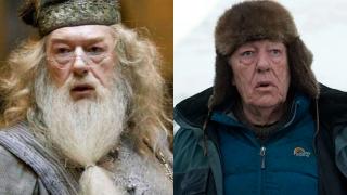 Albus Dumbledore - Michael Gambon