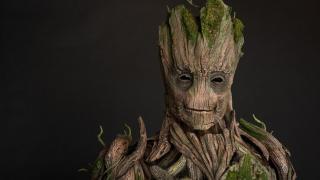 Groot potrafi kontrolować drzewa i inne rośliny, np. tworząc z nich fortyfikacje obronne pokrywające ogromny teren