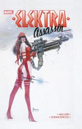 Elektra. Assassin
