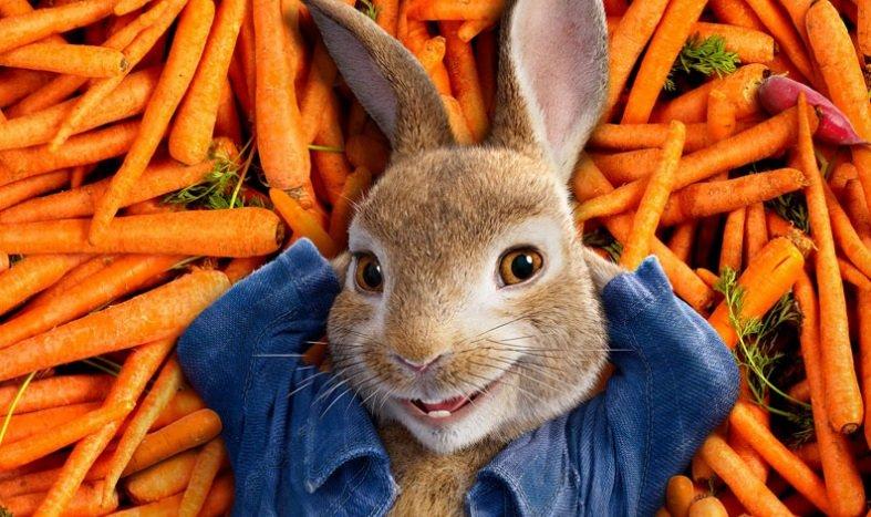 fca28bd18c Fabuła filmu Peter Rabbit skupia się na tytułowym rozrabiace