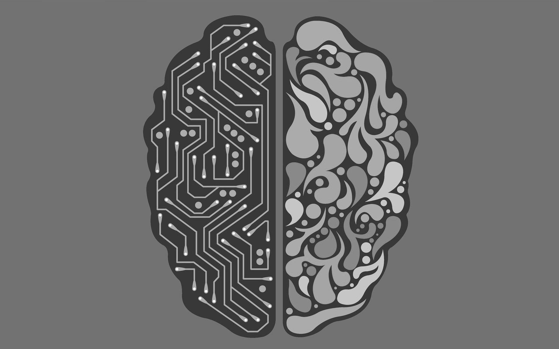 Samsung chce skopiować strukturę mózgu, aby stworzyć jego cyfrowy odpowiednik